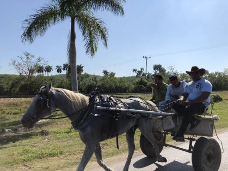 Cuban country side